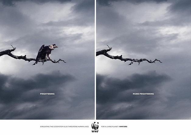 anuncio-animal-12