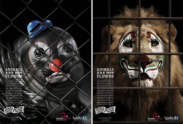 anuncio-animal-2