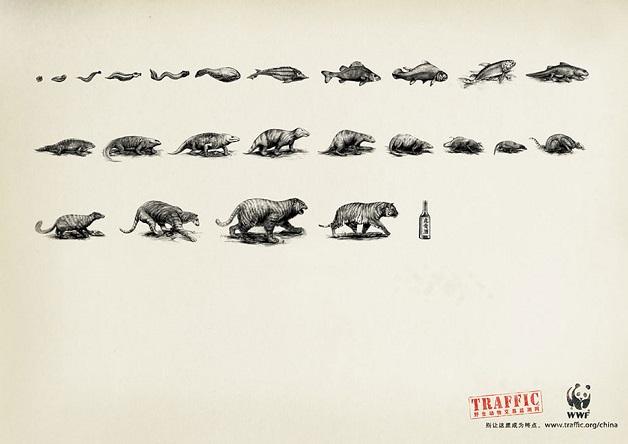 anuncio-animal-35