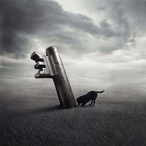 surreal-photoshop-images-shelter-animals-sarolta-ban-4